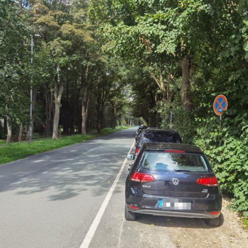 Parkstreifen an der Bremer Straße